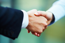 Closeup portrait of hands of business people during a hand shake
